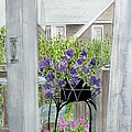 Nantucket Room View by Carol Flagg