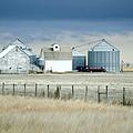 Nebraska by Christine Belt