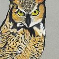 Night Owl by Jeanne Fischer