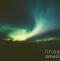 Northern Lights Over Bove Island by Tracy Knauer
