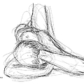 Nude Male Sketches 2 by Gordon Punt
