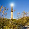 Oak Island Southport North Carolina Lighthouse Through The Cassw by ELITE IMAGE photography By Chad McDermott
