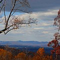 October View by Laura Corebello