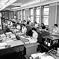 Office Workers Entering Data by Underwood Archives