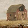 Old Barn by Irina Hays