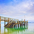 Old Jetty With Steps Maraetai Beach Auckland New Zealand by Colin and Linda McKie