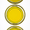 Olive Oil by Frank Tschakert