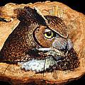 Owl On Oak Slab by Ron Haist