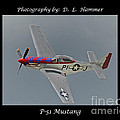 P-51 Mustang by Dennis Hammer