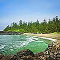Pacific Ocean Coast On Vancouver Island by Elena Elisseeva