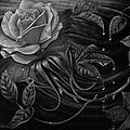 Papalotl Rosalis by Ricardo Chavez-Mendez