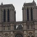 Paris France - Notre Dame De Paris - 01133 by DC Photographer