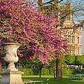 Paris Springtime by Brian Jannsen