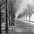 Path Through Fog by Nicky Jameson