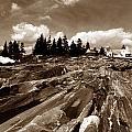 Pemaquid Rocks by Skip Willits