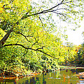 Pennsylvania Autumn Pennypack Creek Philadelphia Pennsylvania by A Gurmankin