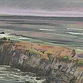 Pescadero Beach by Donald Maier