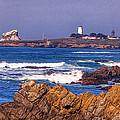Piedras Blancas Lighthouse by David Millenheft