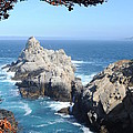 Point Lobos Number Four by Catherine Lau
