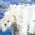 Polar Bear Reflection by J M Lister