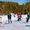 Pond Hockey - Painterly by Les Palenik