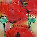 Poppies I by Jani Freimann