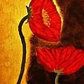Poppy Ll by Marsha Heiken