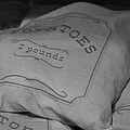 2 Pounds Of Potatoes by Holly Blunkall