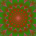 Psychedelic Spiral Vortex Green And Red Fractal Flame by Keith Webber Jr