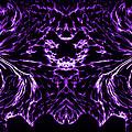 Purple Series 8 by J D Owen