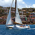 Racing At St. Thomas 1 by Tom Doud