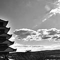 Reading Pagoda by Matt Zerbe