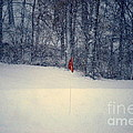 Red Flag On The Snow Covered Golf Course by Catherine Sherman
