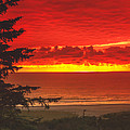 Red Pacific by Robert Bales