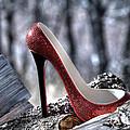 Red Shoe by Sheila Faryna
