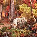 Richards' October by Cora Wandel