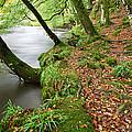 River Barle Exmoor by Pete Hemington