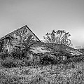 Riverdale Farm by Brian Stevens