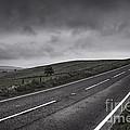 Road by Svetlana Sewell