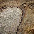 Art Rock by Dayne Reast