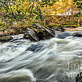 Rocky River by Adrian Evans
