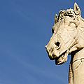 Roman Statue by Fabrizio Troiani