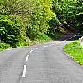 Rural Road by Tom Gowanlock