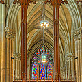 Saint Patricks Cathedral by Dave Mills