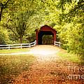 Sandy Creek Covered Bridge by Julie Clements