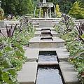 Sarah Lee Baker Perennial Garden 3 by Jeelan Clark