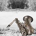Sax On Snowy River by Thom Hanssen