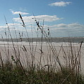 Seaside by Christiane Schulze Art And Photography