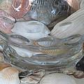 Shells In Bubble Bowl 2 by Ellen Meakin