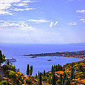 Sicily View by Madeline Ellis